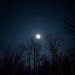 MoonStarsNight