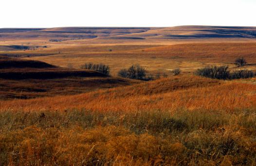 tallgrass-prairie-photo-jk-4